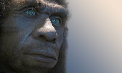 Fifth of Neanderthals' genetic code lives on in modern humans | Gentlemachines | Scoop.it