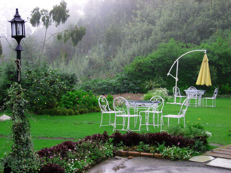 Ooty tours, Tour operators Ooty, Travel agent Ooty, Ooty tourism | Ooty Tours and Travels | Scoop.it