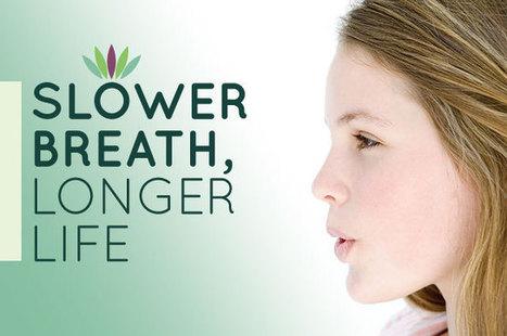 Slower Breath, Longer Life - Liveto110.com | Healthy Lifestyle | Scoop.it