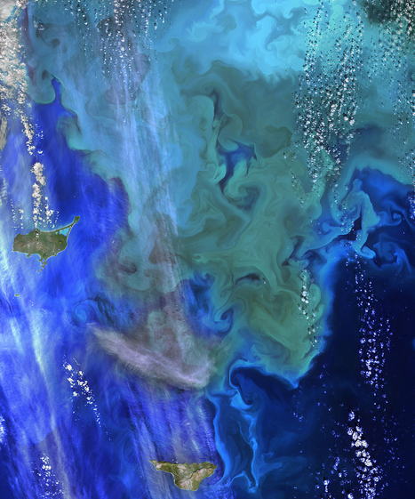 Coloring the Sea Around the Pribilof Islands | Remote Sensing News | Scoop.it