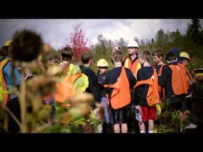 Escola na árvore  para ensinar ciências | Banco de Aulas | Scoop.it