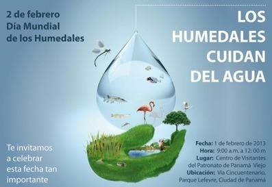 Panamá: Sociedad civil ambientalista alerta sobre estado de los ...   Ecología Urbana   Scoop.it