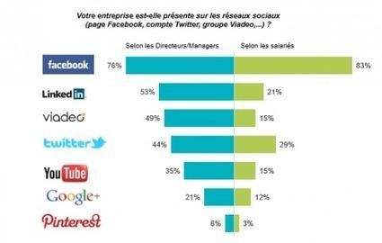 Usages des réseaux sociaux et du digital dans l'entreprise (1/2) - Le blog de la Communication digitale | Linkedin marketing | Scoop.it