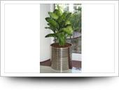 Stainless steel planters,metal planters with plants gallery   Vertical garden planters ,vertical garden ideas - goverhorticulture   Scoop.it