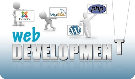 Roles Every Web Development Company Needs | Web Designing And Seo Company | Scoop.it