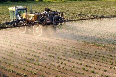 Relation entre pesticides et qualité du sperme ? | Chimie verte et agroécologie | Scoop.it