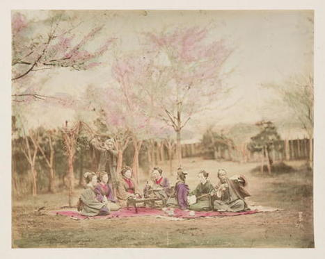 Japanese Cherry Blossoms, Circa 1890 : NPR | Hand Picked By ArchFantasies | Scoop.it