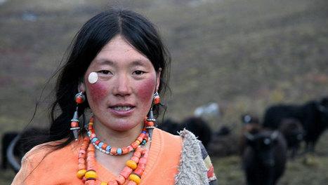 Tibet : Terre des braves - videos.arte.tv | Facile à vivre | Scoop.it