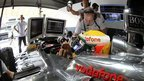 F1 technology helps sick children | New inventions | Scoop.it
