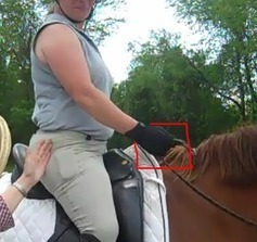 """Where do you keep your hands while you are riding a horse?"" 
