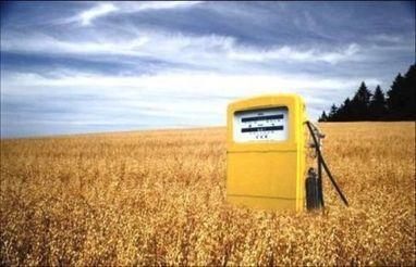 Biorcarburanti, UE limiterà quelli da prodotti agricoli | Il mondo che vorrei | Scoop.it