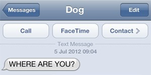Flaw allowing SMS spoofing still present in latest iOS 6 beta | From the Apple Orchard | Scoop.it