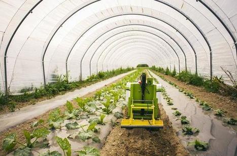 Quand les robots boostent l'agriculture durable | Une nouvelle civilisation de Robots | Scoop.it