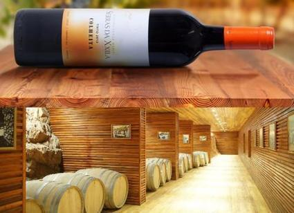 L'Angola veut exporter vers le Portugal son premier vin produit et embouteillé localement | Le vin quotidien | Scoop.it