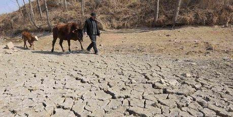 Changement climatique : le prix des aliments de base doublerait d'ici vingt ans | développement durable - périnatalité - éducation - partages | Scoop.it