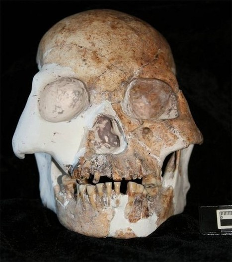 Possible new species of human discovered in China | ksl.com | Topics of my interest | Scoop.it