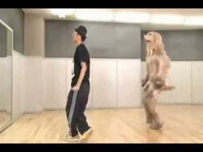 Consome Panchi Japanese Commercial   Funny Commercials   Scoop.it