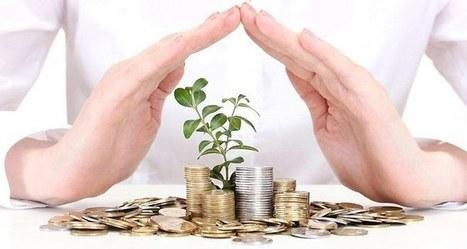 L'économie sociale et solidaire, un filon bancaire | Services financiers et innovations | Scoop.it