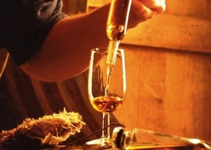 France's top 10 food & wine tours | The Cognac and its vineyards | Scoop.it