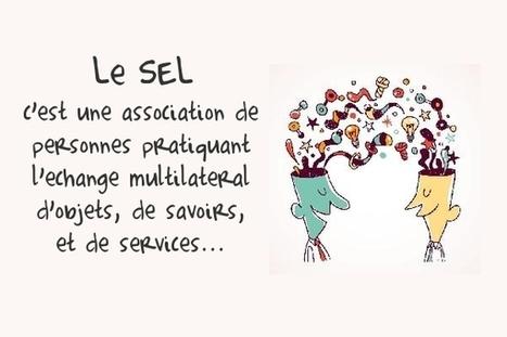 RéuniSEL   Echanges d'Objets, Services et Savoirs à la Réunion   Ile de La Réunion   Scoop.it
