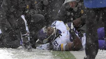 Vikings RB Adrian Peterson rips Ravens fans on Twitter - Baltimore Sun (blog) | J585 Team Calvert | Scoop.it