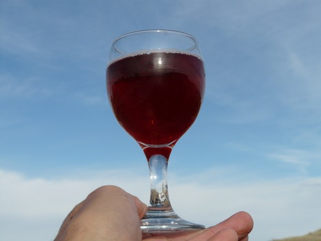A su salud. La historia más alocada del vino (1ª parte). - sabersabor.es | asado | Scoop.it