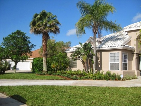 Tree Trimming And Pinecrest Landscaping Services At Miami   Landscapings   Scoop.it