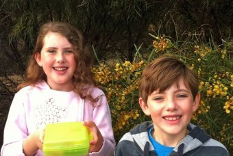Geocaching - catching on as modern day treasure hunting - ABC Australia Online | Pervasive Entertainment Times | Scoop.it