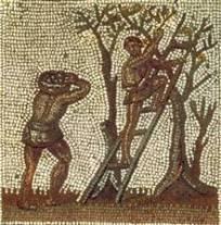 Arkhaiox   Arqueología y mundo antiguo: El destino de los plebeyos   Mundo Clásico   Scoop.it