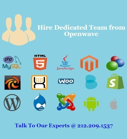 Hire Dedicated Resources from Openwave | Web Application Development Company | Scoop.it