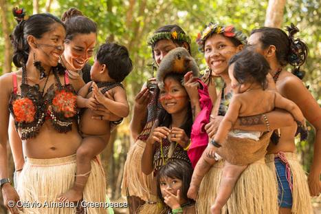 Amazonie : Victoire : le méga-barrage sur le fleuve Tapajós abandonné | The Blog's Revue by OlivierSC | Scoop.it