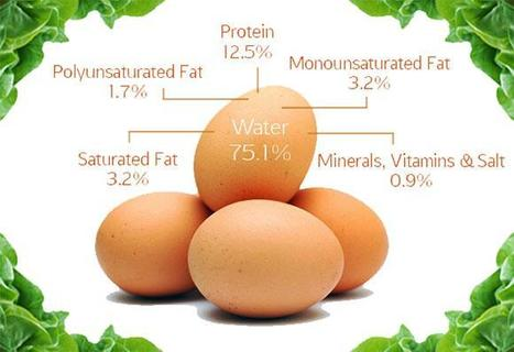 """Are Eggs High In Cholesterol? (""""you can take it daily and live a healthy life"""") 