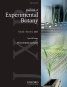 Root phenotyping: from component trait in the lab to breeding | Plant Gene Seeker -PGS | Scoop.it