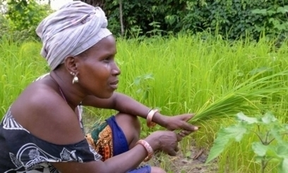 Five Ways to Make Agriculture Innovation Better Serve the Needs of Women Farmers | Gender in Agriculture Partnership | Future of agriculture knowledge resource centres | Scoop.it
