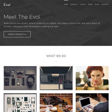 Evol WordPress Theme | WordPress Theme Download | Best WordPress Themes 2013 | Scoop.it