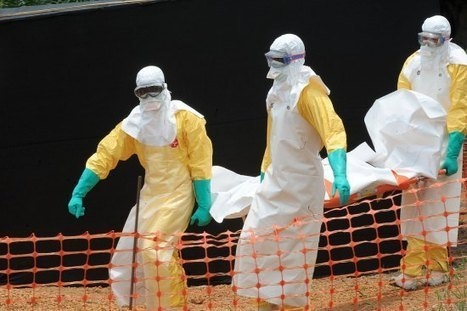 Doctors Without Borders on Ebola: We Have Reached Our Limits | future | Scoop.it