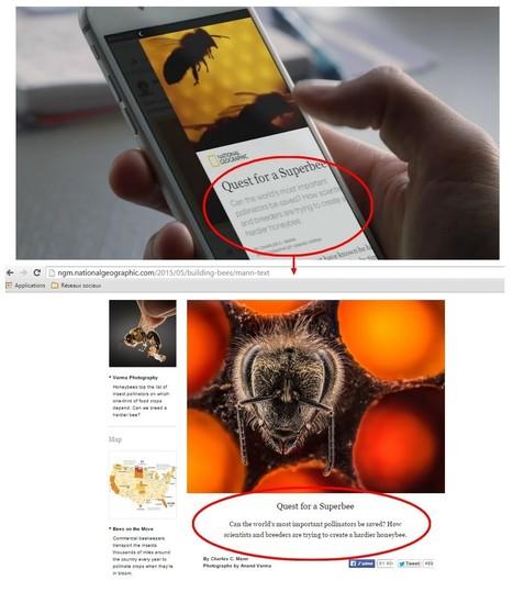 Comment Facebook va vous forcer à publier vos articles directement sur son réseau | Toulouse networks | Scoop.it