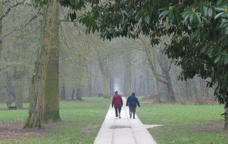 Tremblay : 1 000 signatures pour sauver le parc de la Poudrerie   actualités en seine-saint-denis   Scoop.it