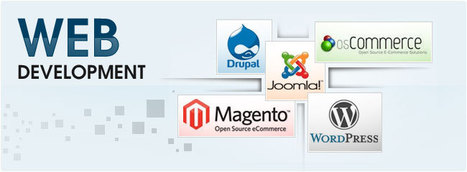 Majestic Business Solutions Web Service provider company in Delhi. | Majestic Business Solutions | Scoop.it