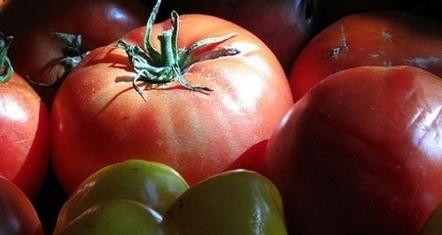 L'Europe veut mettre un terme aux faux produits bio | agro-media.fr | Actualité de l'Industrie Agroalimentaire | agro-media.fr | Scoop.it