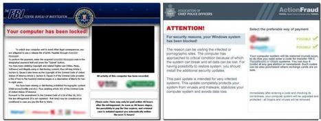 Legal raids in five countries seize botnet servers, sinkhole 800,000+ domains | Nulzsec Security Blog | Scoop.it