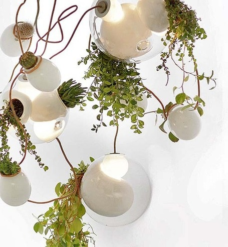 Living Plant Chandeliers | The Glory of the Garden | Scoop.it