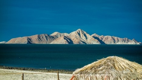 Why Americans Should Be Thankful for Baja, Mexico   Baja California   Scoop.it