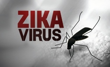 Premier cas de Zika importé à Mayotte - Created by J.-T Faatau - In category: bassin-indien-Appli, Fil-info-appli, Société - Tagged with: cas autochtone, cas détecté, épidémie, importé, Mayotte, Oc... | Options Futurs Rio+20 | Scoop.it