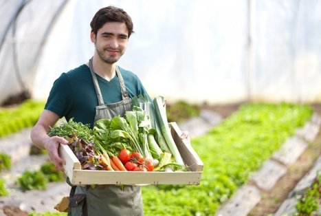 New York City Apartment Complex Seeks Farmer-in-Residence | sustainablity | Scoop.it