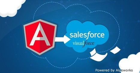 4 Reasons to use AngularJS in Salesforce Visualforce pages | Nova Tech Consulting S.r.l. | Scoop.it