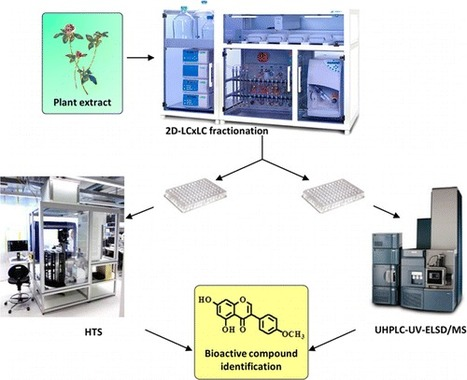 Standardized LC×LC-ELSD Fractionation Procedure for the Identification of Minor Bioactives via the Enzymatic Screening of Natural Extracts | Natural Products Chemistry Breaking News | Scoop.it