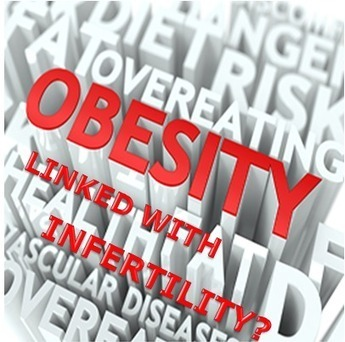 HOW OBESITY IS LINKED WITH INFERTILITY?   Healthy Fitness Tips   Scoop.it