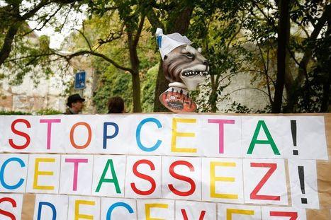 Sur le Ceta, «les petits Etats n'auraient que le droit de se taire ?» - Paul Magnette - Libération | Actualités écologie | Scoop.it