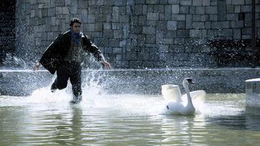 For a Moment, Freedom (2008) - Fiction de Arash T. Riahi | Immigration Film Team | Scoop.it